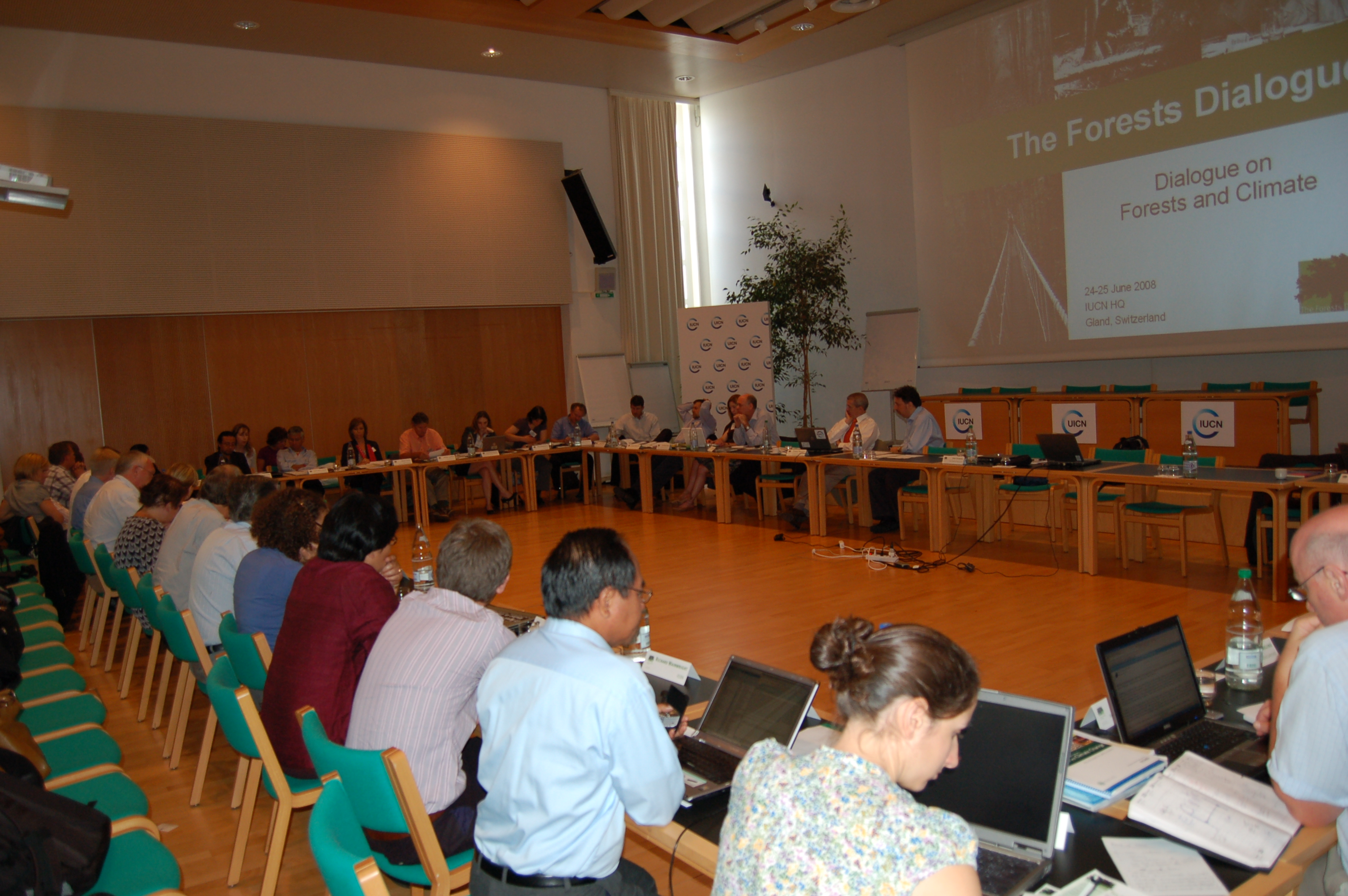 Dialogue on Forests and Climate plenary